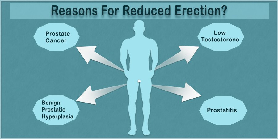 What are the Reasons for Reduced Erection?